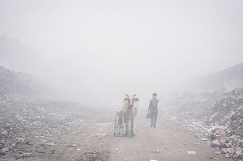 Dampak Asap Kebakaran TPA Putri Cempo