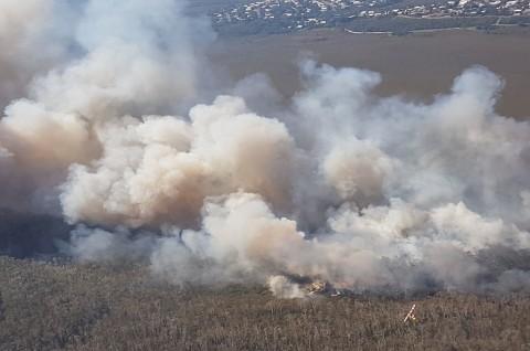 Kebakaran Hutan di Australia Hanguskan Puluhan Rumah