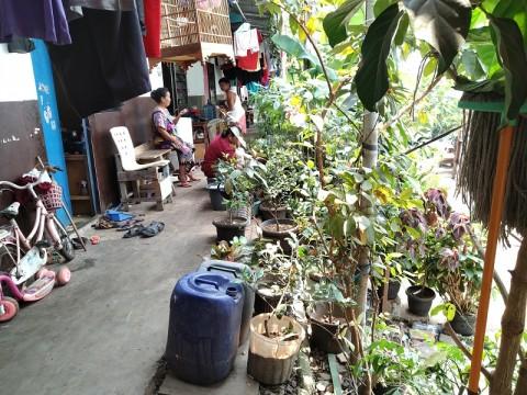 Warga Kampung Akuarium Ingin Terlibat Pembangunan Rusun