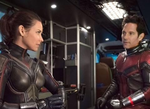 Belum Ada Kepastian soal Kelanjutan Film Ant-Man