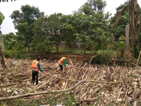 Sampah Bambu Sepanjang 120 Meter Sumbat Sungai Cikeas