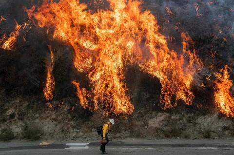 Kebakaran Hutan Hanguskan 3.000 Hektare Lahan di California