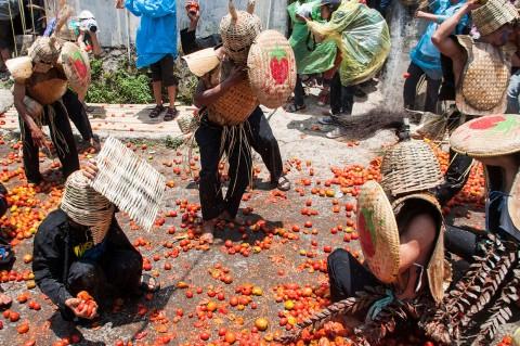 Serunya Tradisi Perang Tomat di Cikareumbi Bandung