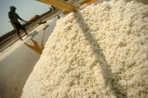 Kuota Impor Garam Diminta Dibatasi