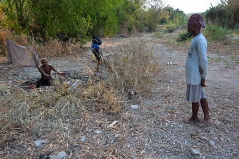 Puluhan Ribu Sawah di Jatim Terdampak Kekeringan