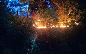Dalam Sehari, 3 Insiden Kebakaran Terjadi di Depok