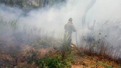 Kebakaran Dua Gunung di Gowa Hanguskan Ratusan Hektare Hutan