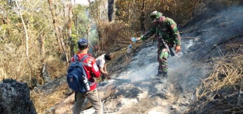 Api Masih Berkobar di Hutan Gunung Sumbing