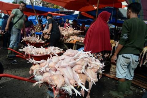 Harga Daging Ayam dan Rokok Sumbang Inflasi Oktober