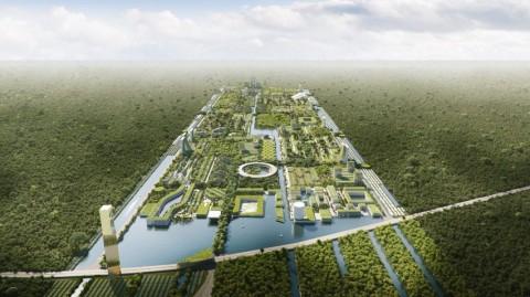 Desain <i>Smart City</i> Meksiko Diselimuti 7,5 Juta Ton Tanaman