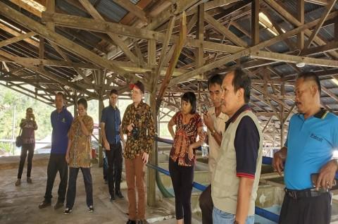 KJRI San Francisco Bawa Pengusaha Kopi AS ke Tana Toraja