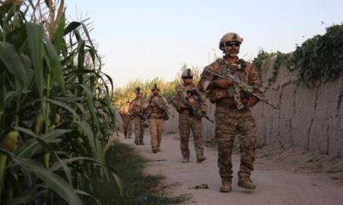 9 Anak Tewas Menginjak Ranjau di Afghanistan