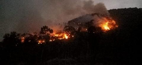 Kebakaran Hutan Gunung Guntur Diidentifikasi