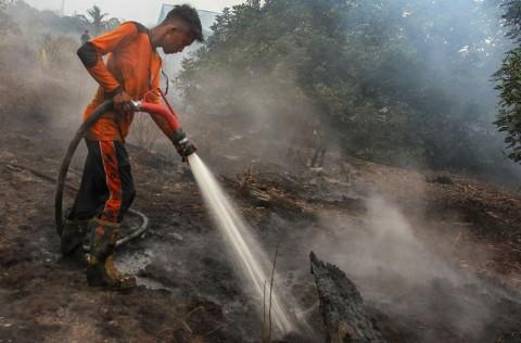 Karhutla Riau Habiskan Anggaran BNPN Rp468 Miliar