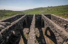 Gigi Berusia 40 Ribu Tahun Ditemukan di Israel