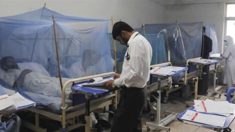 44 Ribu Warga Pakistan Terjangkit DBD, 66 Tewas