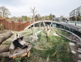 Kandang Panda Bertema Yin Yang di Denmark