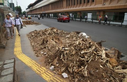 Anies Dilarang Dewan Asal Menebang Pohon
