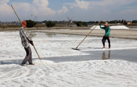 BPPT Kembangkan Teknologi Pembuatan Garam Industri
