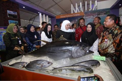 Jatim Kewalahan Memenuhi Ekspor Ikan Patin ke Arab Saudi
