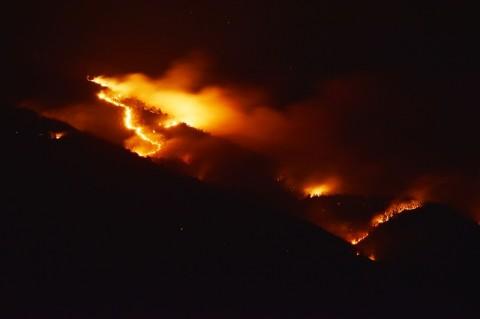 Lereng Gunung Lawu Terbakar