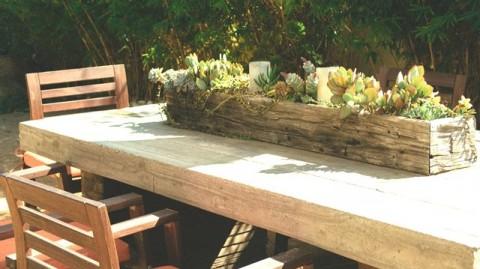 Cara Simpel Membuat Taman Succulent