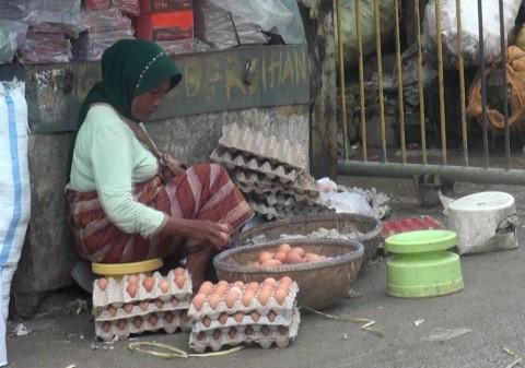 Telur Ayam di Sumenep Aman Dikonsumsi