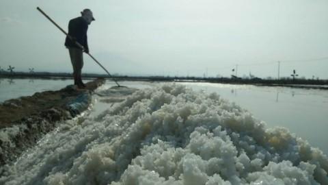 Garam Petani di Cirebon Tak Laku