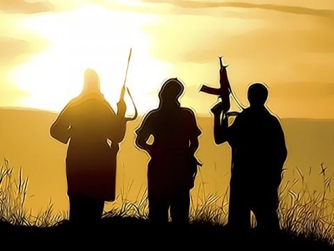 Dua KKB Tewas Saat Kontak Tembak di Balingga