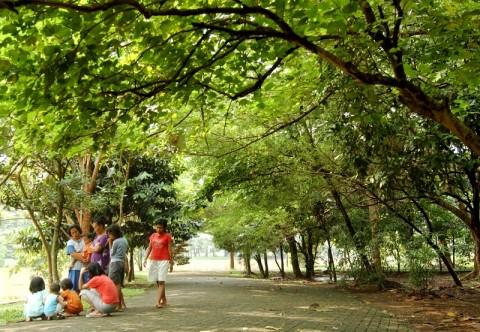 Hutan Kota sebagai Keberlanjutan Lingkungan