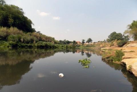 Tiga Daerah di Jatim Terdampak Pencemaran Sungai Bengawan Solo