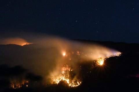 Kobaran Api Raksasa Muncul di Utara Sydney