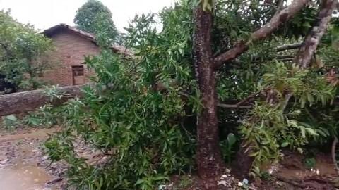 Angin Kencang Sapu Desa di Jepara dan Kudus