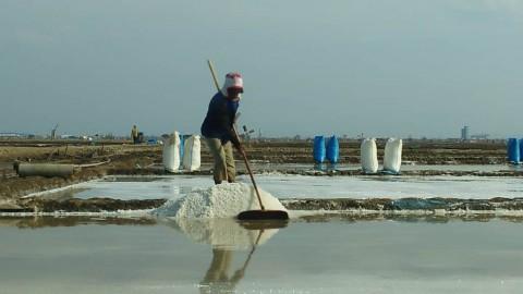Harga Garam Petani Anjlok Disebut karena Impor