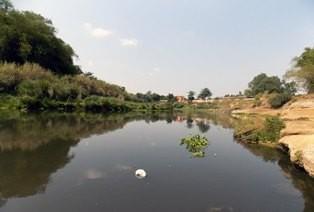 Pencemaran Sungai Bengawan Solo Tak Sampai ke Jatim