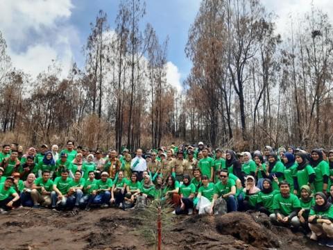 Usai Hangus Terbakar, Pegunungan Ijen Ditanami Ratusan Pohon