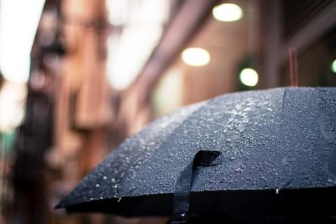 Penyakit yang Berpotensi Muncul saat Musim Hujan