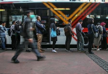 Metrotrans Rute Ragunan Digratiskan