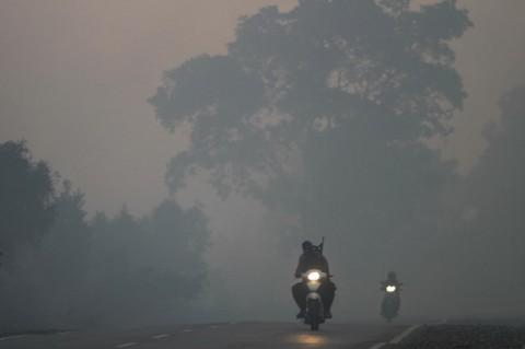 Kaleidoskop 2019: Kebakaran Sempat Memanaskan Indonesia