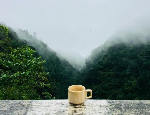 Menyeruput Kopi Banyuwangi di Kaki Gunung Raung