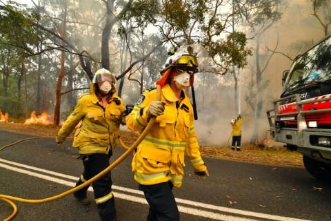 Hujan Sejenak Redakan Kebakaran Hutan Australia