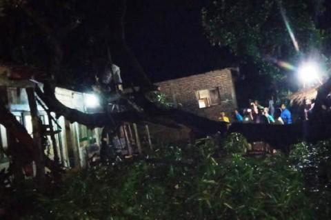 Pohon Tumbang Timpa Rumah di Jepara