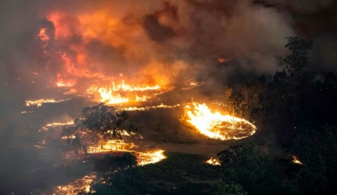 Jelang Pesta Kembang Api, Kebakaran Hutan Australia Makin Parah