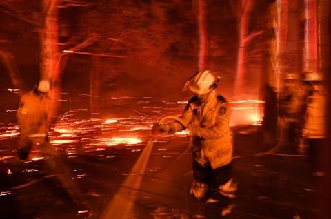 Ribuan Turis Terperangkap Kebakaran Hutan Australia