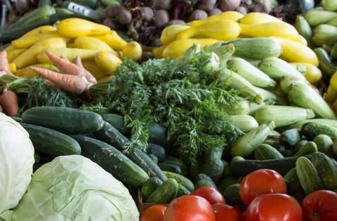 Makanan yang Dapat Meningkatkan Sistem Imun Tubuh