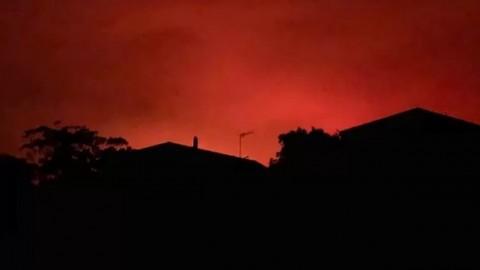 Asap Kebakaran Hutan Berpotensi Ganggu ATP Cup 2020