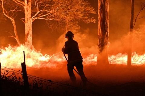 Krisis Kebakaran Hutan, Australia Kerahkan 3.000 Prajurit
