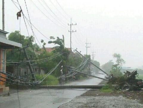 Puluhan Tiang Listrik di Sidoarjo Tumbang