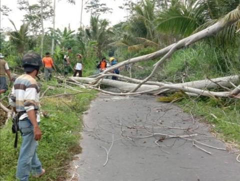 Dana Darurat Bencana Kabupaten Sleman Rp5,74 Miliar