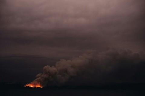 180 Orang Ditangkap Terkait Kebakaran Hutan Australia